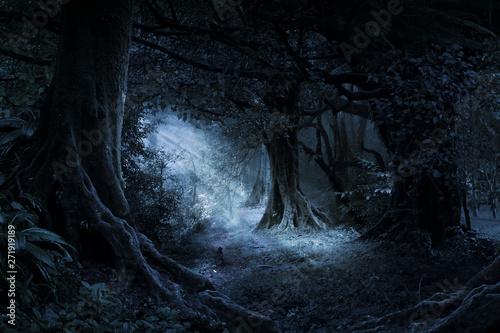 Fotografie, Tablou Deep tropical jungle in darkness