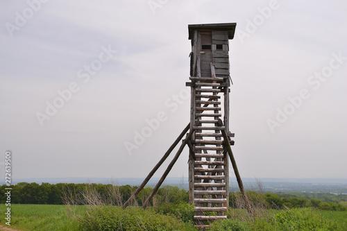 Fotografija mirador, tour de guet en bois pour chasseurs, structure en bois, Alsace, France