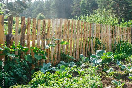 Leinwand Poster fenced vegetable garden
