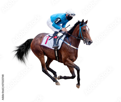 Obraz na plátně jockey horse racing isolated on white background