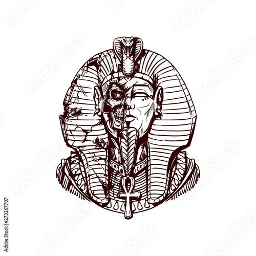 Fotografie, Obraz Egyptian pharaoh in a destroyed sarcophagus