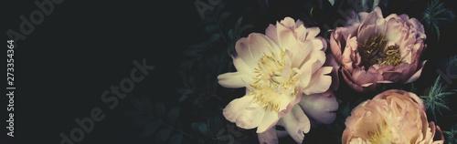 Vintage bouquet of beautiful peonies on black. Floristic decoration. Floral b...