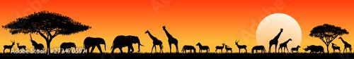 African savanna animals at sunset. Silhouettes of wild animals of the African savannah
