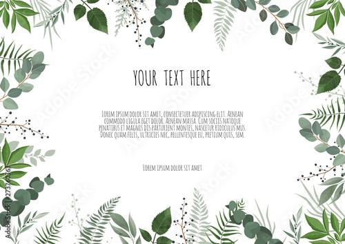 Fotografia, Obraz Green leaves border isolated on white background.