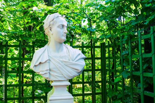 Fotografia Summer garden, St Petersburg, Russia