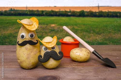 Платно funny potato head with face on nature background