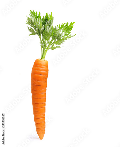 Photo Carrot isolated on white