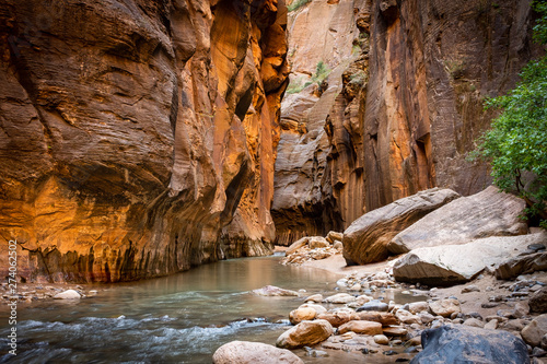 Canvas Print The spectacular and stunning Virgin River weaves through the Narrows, Zion Natio