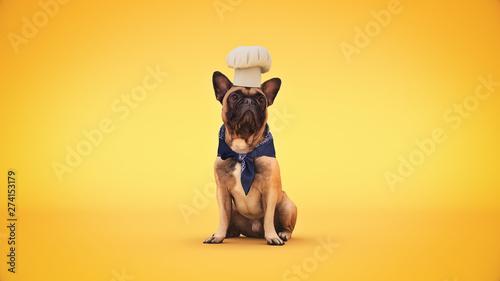 Fotografia dog chef cook. 3d rendering