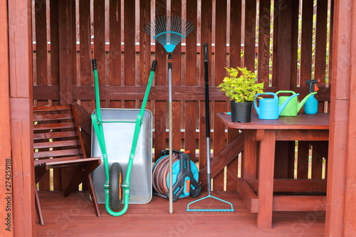 Decorative shrub along with garden equipment and tools in a wooden shed Fototapeta