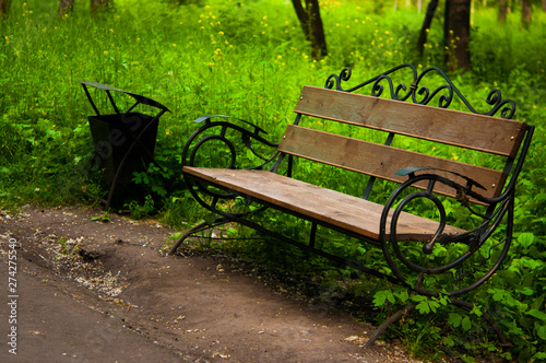 Empty wooden bench in the park beside the grass and path Fototapet