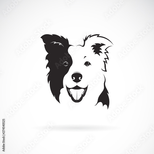 Leinwand Poster Vector of a border collie dog on white background
