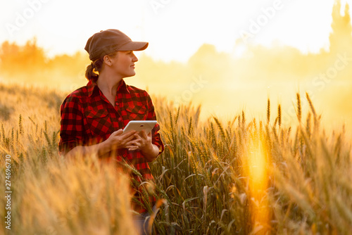 Fotomural A woman farmer examines the field of cereals and sends data to the cloud from the tablet