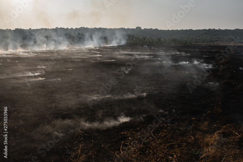 Valokuva disaster burning field under smoke and ash from industry