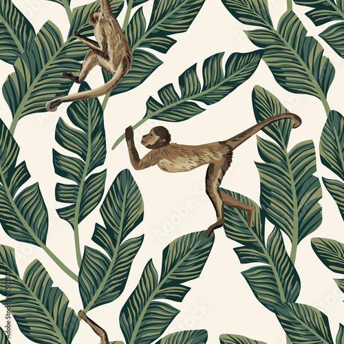 Wallpaper Mural Monkey banana leaves seamless white background