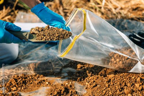 Fotografiet Soil Testing. Agronomy Inspector Taking Soil Sample
