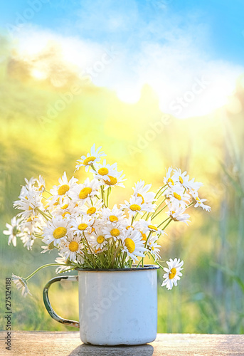 Bouquet of beautiful daisies in white cup, summer garden Fototapete