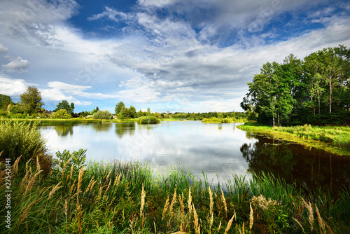 Fototapeta A view of the small country lake with a village and green forest in the backgrou