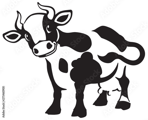 Canvas Print cartoon spotted cow