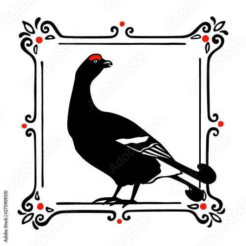 Fotografie, Obraz Hand drawn black grouse