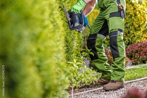 Valokuvatapetti Trimming Green Garden Wall