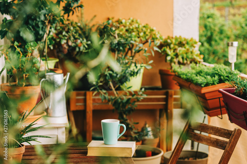 Photo Cozy summer balcony with many potted plants, cup of tea and old vintage book