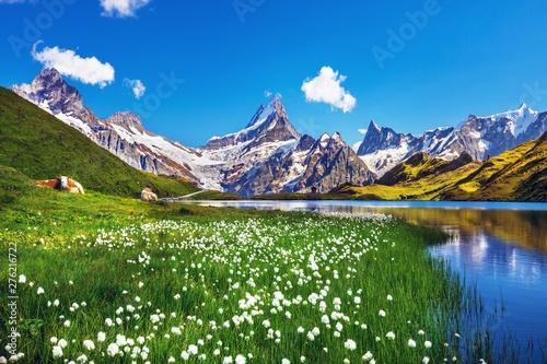 Obraz na płótnie Scenic view on Bernese range above Bachalpsee lake
