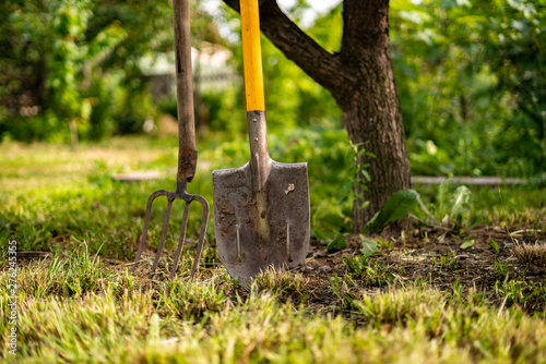 Tablou Canvas inserted shovel and pitchfork into the ground in the garden