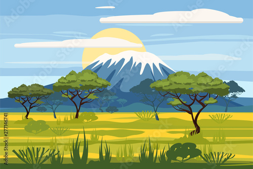 Fototapeta African landscape savannah wild nature