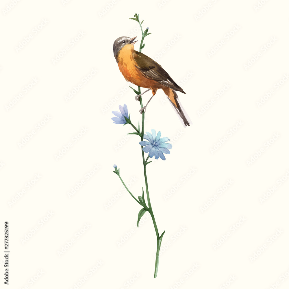 Watercolor vector bird on the flower <span>plik: #277325199 | autor: zenina</span>