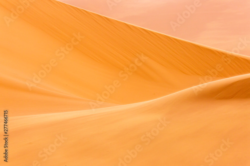 Valokuva Desert Sahara with beautiful lines and colors at sunrise