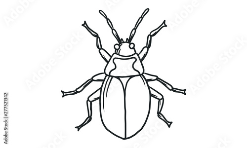Cuadros en Lienzo Vector lineart illustration of beetles on white background, hand drawn Japanese