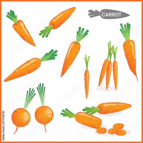 Obraz na plátne Set of fresh carrot vegetable with carrot tops in various cuts and styles in vec