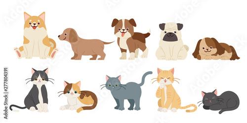 Slika na platnu cute cartoon dogs and cats