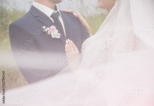 Canvas Print Groom and bride are hugging