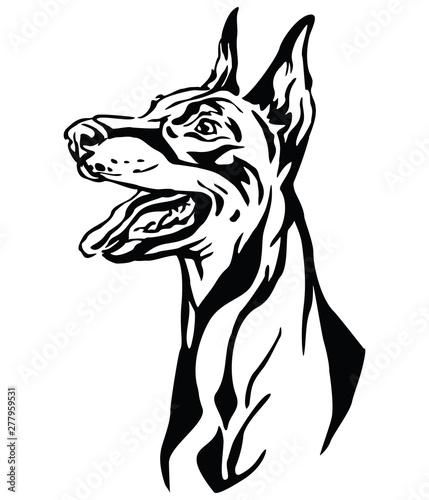 Obraz na płótnie Decorative portrait of Dobermann vector illustration