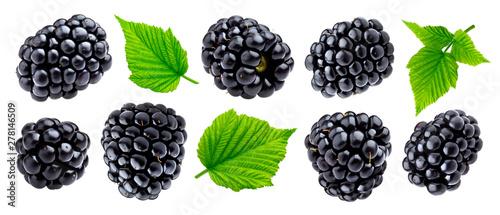 Ripe blackberry isolated on white background closeup