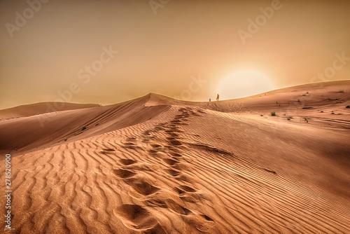 Obraz na płótnie Desert, sunset in desert, desert in Dubai