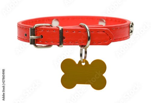 Fotografering Red Dog Collar and Tag Cut Out
