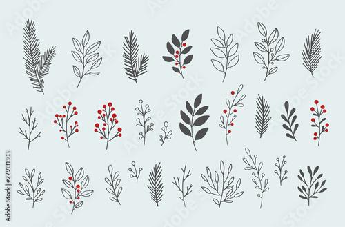 Wallpaper Mural Hand drawn vector winter floral elements