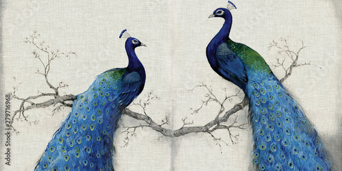 Stampa su Tela 3d mural background blue peacock on branch wallpaper