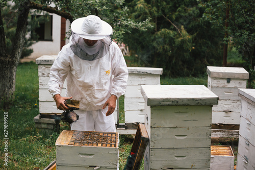 Foto worker in protective clothes opening bees hive