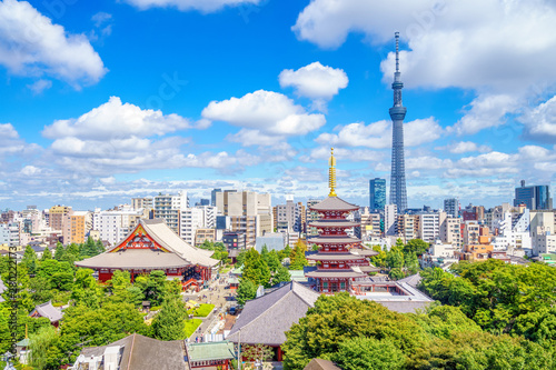 Wallpaper Mural Aerial view of tokyo city with senso temple