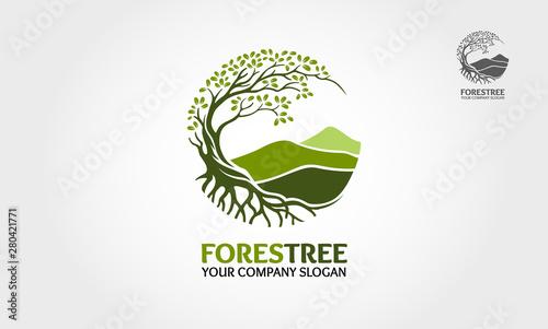 Obraz na płótnie Forest Tree vector logo