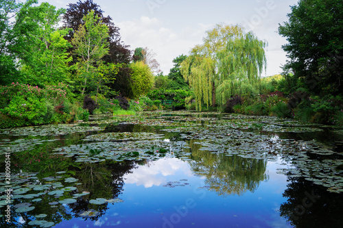 Fototapeta Pond with lilies in Giverny