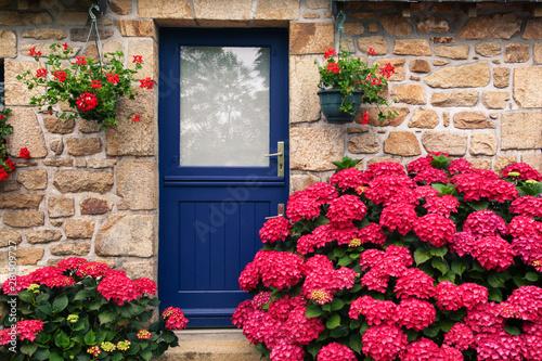 Fotografia, Obraz flowers on the door