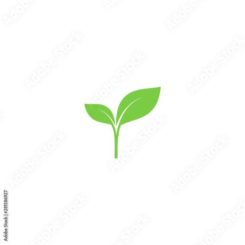 Fényképezés Young sprout green vector icon