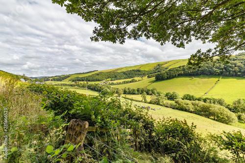 Obraz na płótnie Countryside in Powys, mid Wales in the UK