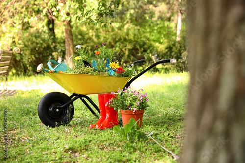 Obraz na płótnie Wheelbarrow with gardening tools and flowers on grass outside