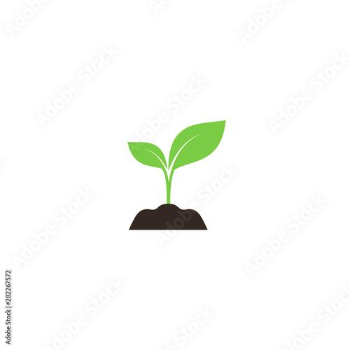 Young sprout in soil colorful vector icon Tapéta, Fotótapéta